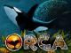 Игровой автомат Orca онлайн в Вулкан Платинум