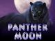 Panther Moon онлайн от Вулкан Платинум